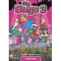Big Bugs 3 Flashcards
